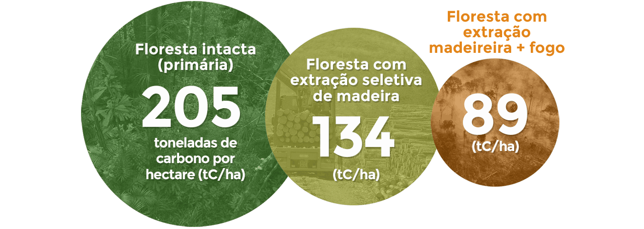 cn-infographic-01